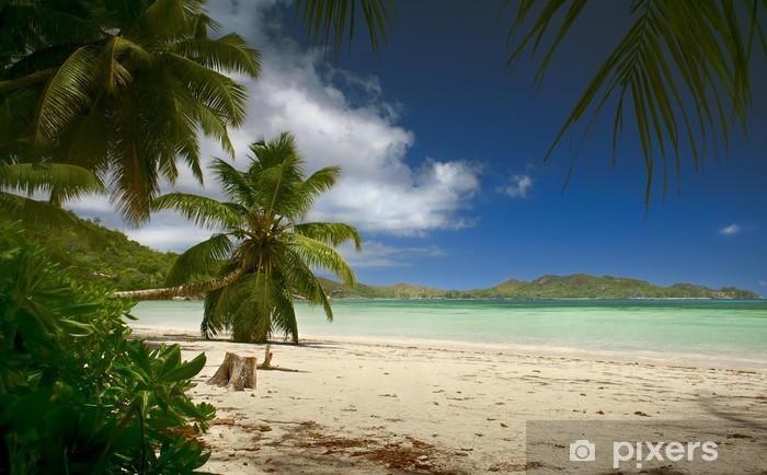 Naklejka Pixerstick Plaża z palmami Seszele - Wakacje