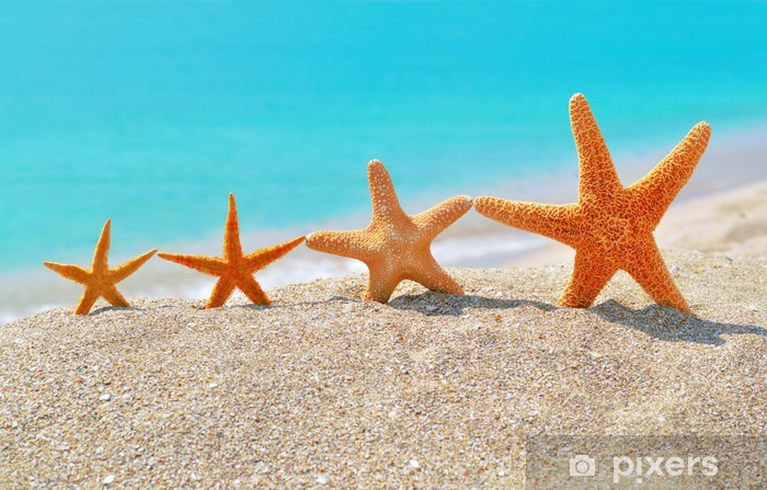 Sticker Pixerstick Étoiles de mer sur la plage - Hawaii