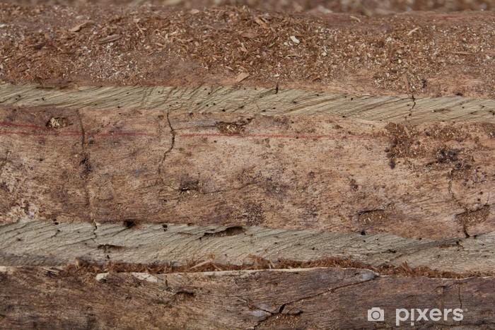 Vinyl-Fototapete Wooden Cut Textured - Naturwunder