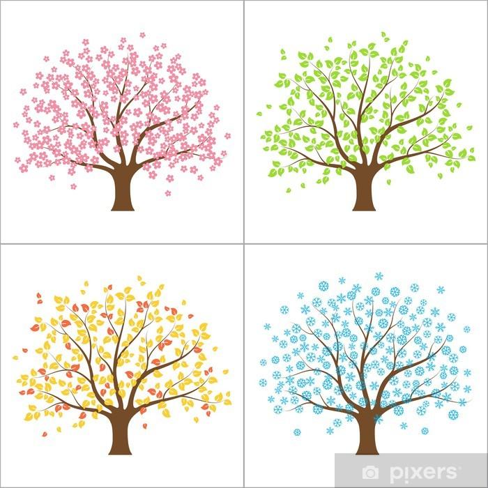Ilkbahar Yaz Sonbahar Ve Kış Aylarında Ağaç Dört Mevsim Kavramı