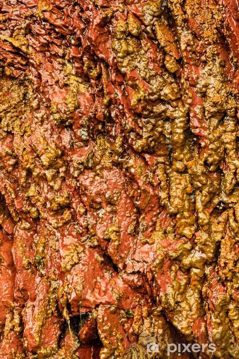 Fototapeta winylowa Tło pomarańczowe ściany kamień mokro tekstury na zewnątrz - Tekstury