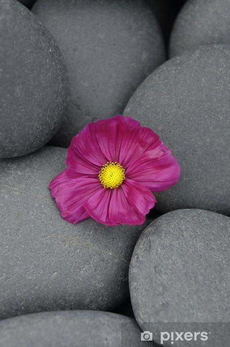 Sticker Pixerstick Macro de fleur rouge sur galets - Beauté et soins du corps