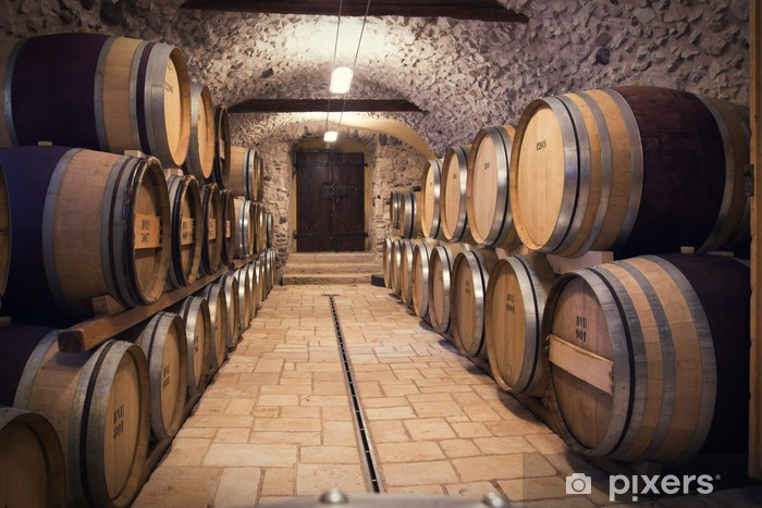Ancient wine cellar Vinyl Wall Mural - Styles