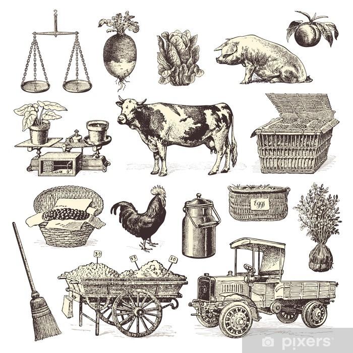 Fototapeta winylowa Elementów rynku rolników - Rolnictwo