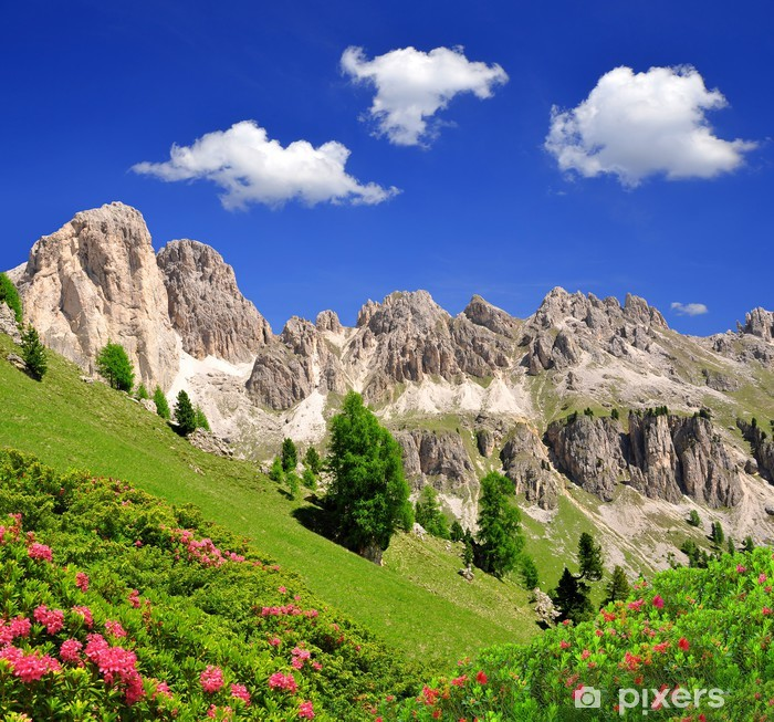 Sticker pour vitres et fenêtres Les pics des Dolomites, Rosengarten, Val di Fassa, Italie Alpes - Europe