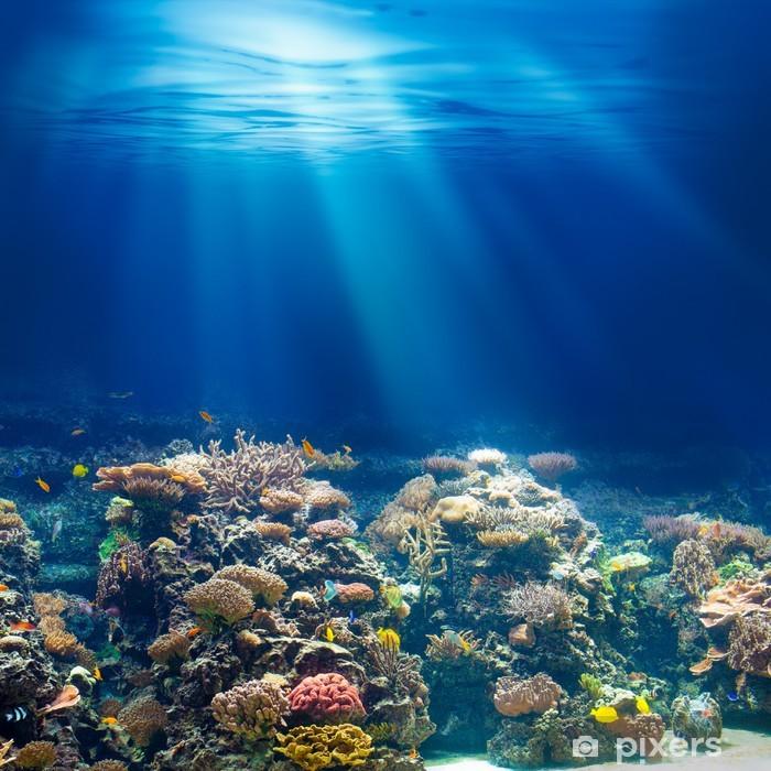 Naklejka Pixerstick Morskiego lub oceanu podwodna rafa koralowa z rurką lub akwalungiem backgrou - Rafa koralowa