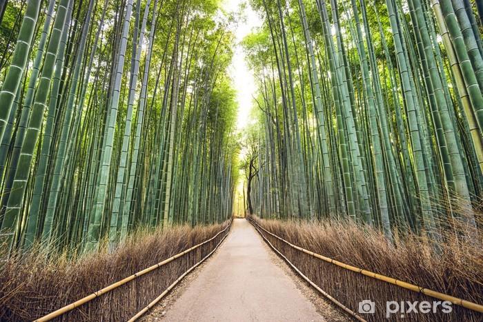 Fotomural Estándar Bosque de bambú, Kioto, Japón - Temas