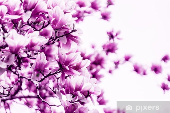 Papier peint vinyle Fleur de magnolia fleur - Thèmes