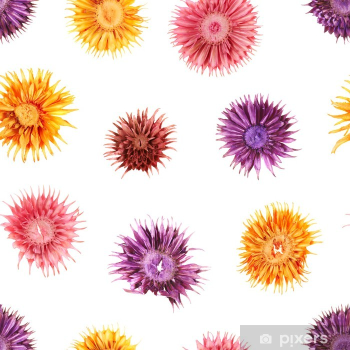 Plakat Suszone kwiaty bez szwu wzór - Kwiaty
