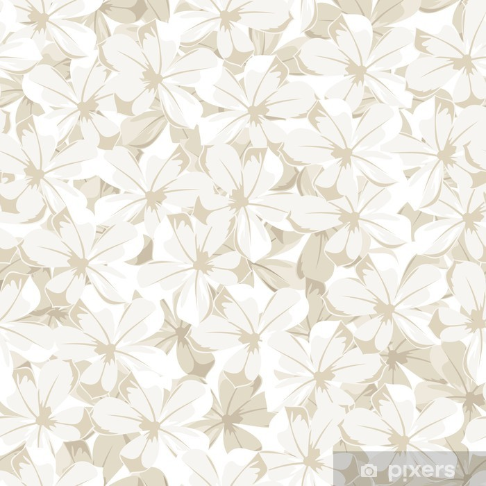 Sfondo fiori bianchi