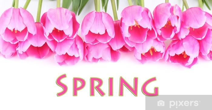 Naklejka Pixerstick Piękne różowe tulipany na białym tle. - Kwiaty