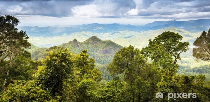 Papier peint vinyle Queensland Rainforest - Thèmes