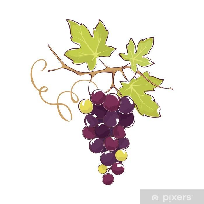 Carta da parati grappolo d 39 uva nera pixers viviamo for Carta parati vinile