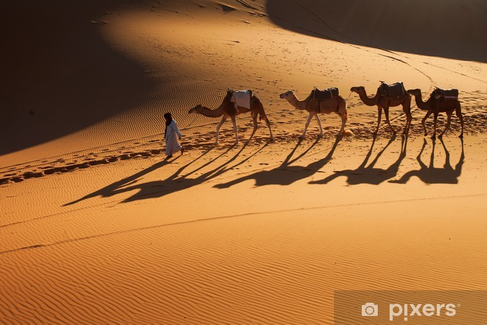Desert Sahara, Camel Ride Caravan, Enjoying and happy People Vinyl Wall Mural - Desert