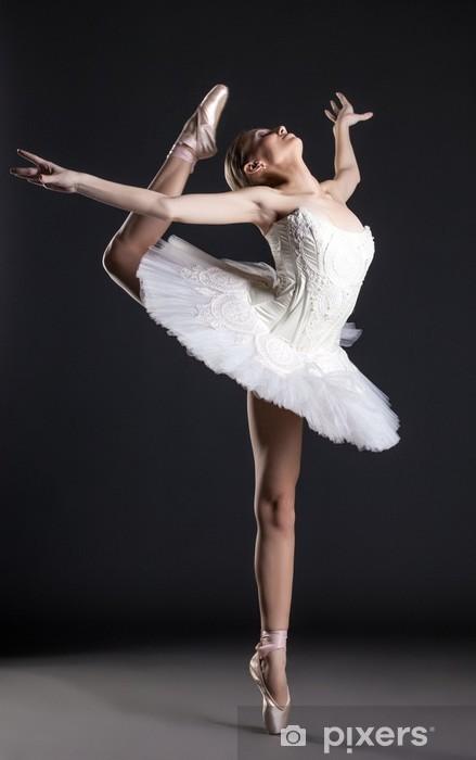 Naklejka Pixerstick Obraz z elastycznego ładny tancerka w studio - Tematy
