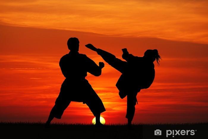 Adesivo Pixerstick Karate al tramonto - Temi
