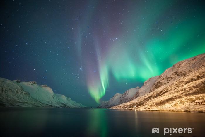 Fototapeta winylowa Zorza polarna, Ersfjordbotn, Tromso, Norwegia - Tematy