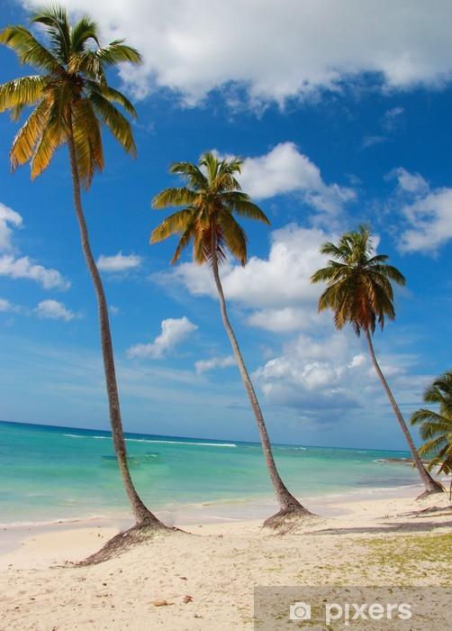 Fototapeta winylowa Caraibi - Wyspy