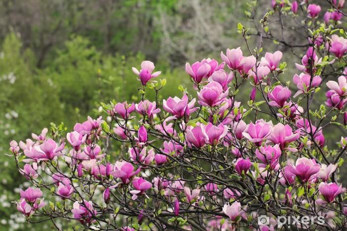 Sticker Pixerstick Marnolia rose - Arbres