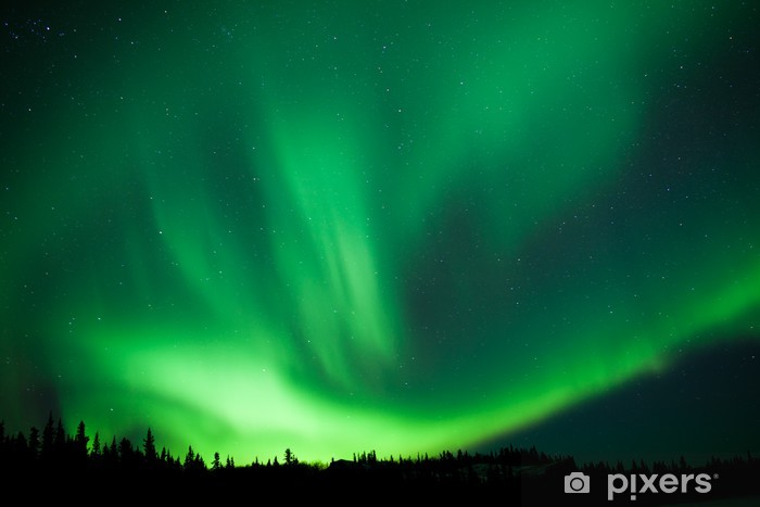 Boreal forest taiga Northern Lights substorm swirl Washable Wall Mural - Wonders of Nature