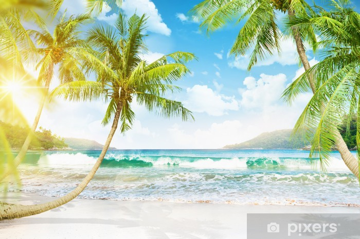 Tropical island with palm trees Vinyl Wall Mural - Themes