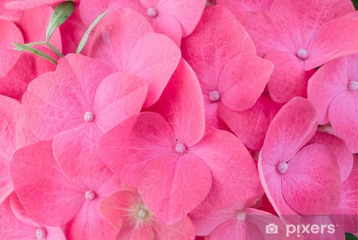 Pink hortensia hydrangea Pixerstick Sticker - Flowers