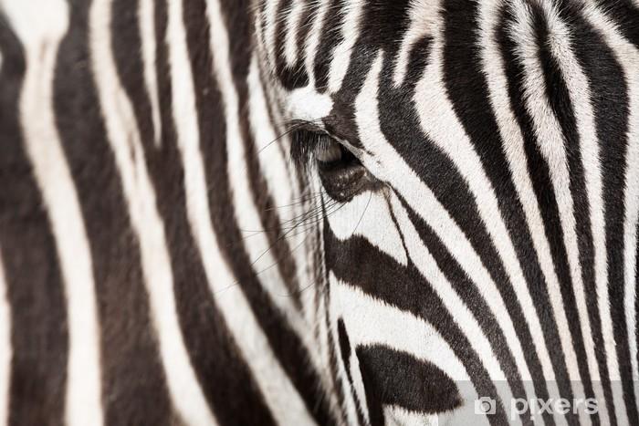 Zebra detail Pixerstick Sticker - Styles