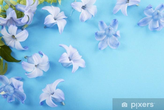 Vinyl-Fototapete Verstreut blaue Hyazinthe blüht - Haus und Garten