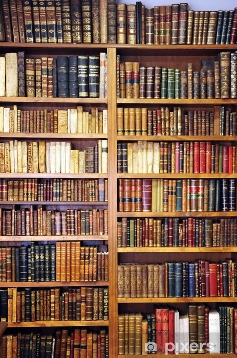 Old books, library Vinyl Wall Mural - Library