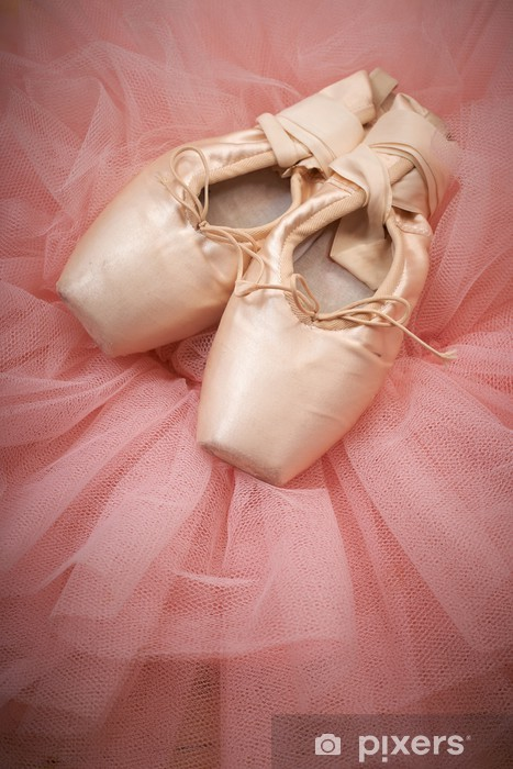 pair of ballet shoes pointes on wooden floor Vinyl Wall Mural - Art and Creation