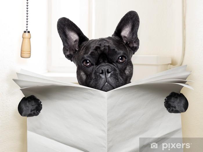 Naklejka Pixerstick Pies WC - Buldogi francuskie