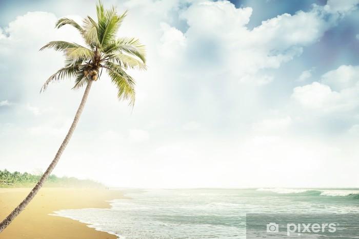 Fototapeta winylowa Plaża-018 - Hawaje