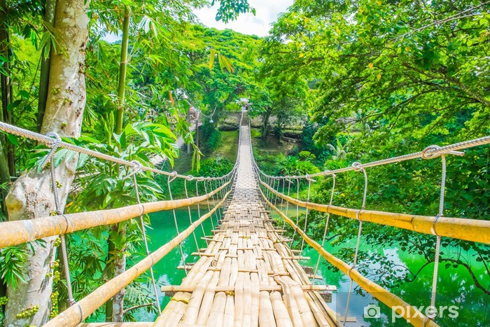 Fototapeta winylowa Bambus zawieszenie most dla pieszych nad rzeką - Tematy