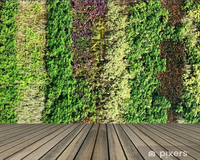 Fotomural Estándar Flores y plantas de pared jardín vertical - Plantas