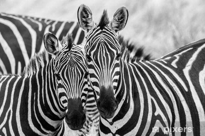 Adesivo Pixerstick Zebre innamorate - Temi