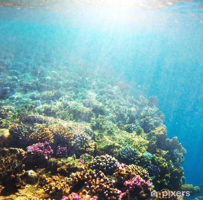 Coral reef Pixerstick Sticker - Coral reef