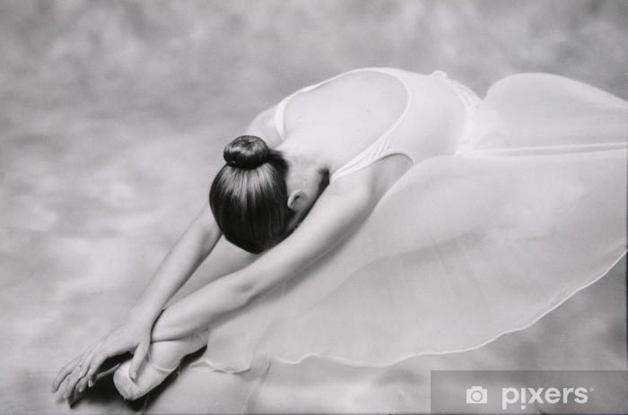 Carta da Parati in Vinile Ballerino 1 - Temi