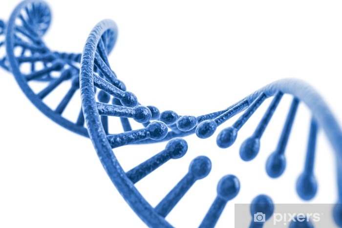 3d render of dna structure, abstract background Pixerstick Sticker - Health and Medicine