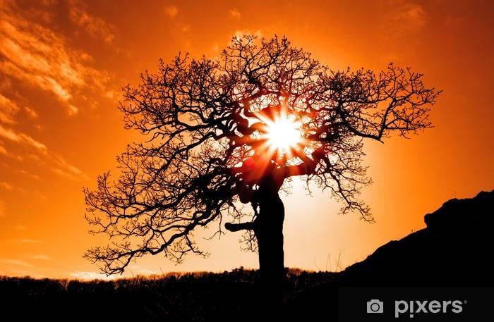 Sticker Pixerstick Seul l'arbre avec le soleil et la couleur rouge orange jaune ciel - Thèmes
