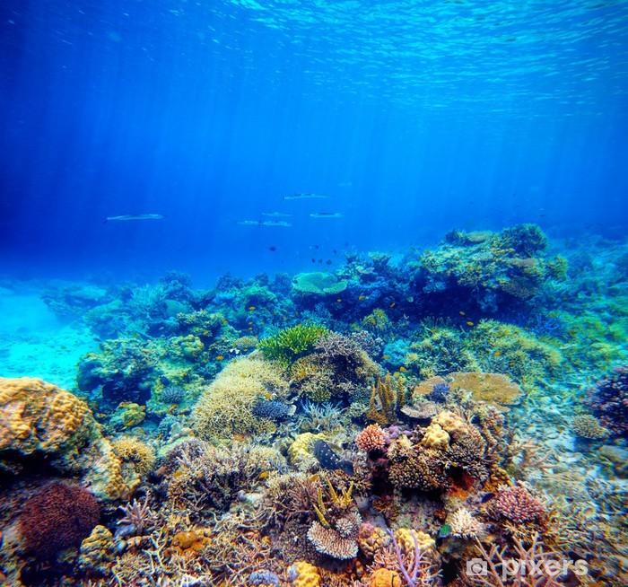 Pixerstick Sticker Onderwater scene. Koraalrif, kleurrijke vissen en zonnige hemel shinin - Koraalrif