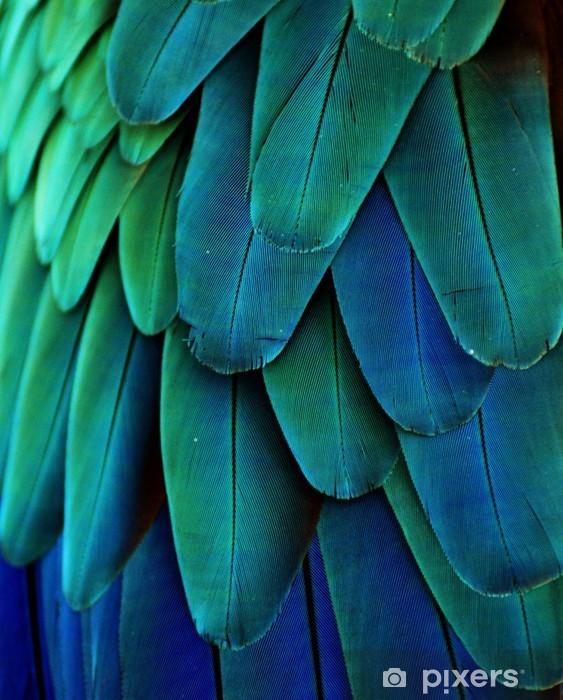 Papier peint vinyle Plumes d'ara (bleu / vert) - iStaging