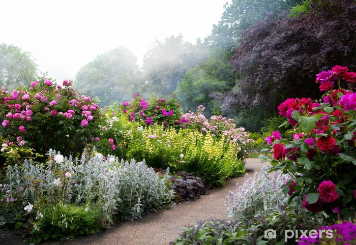 Papier peint vinyle Fleurs de l'art dans la matinée dans un parc à l'anglaise -