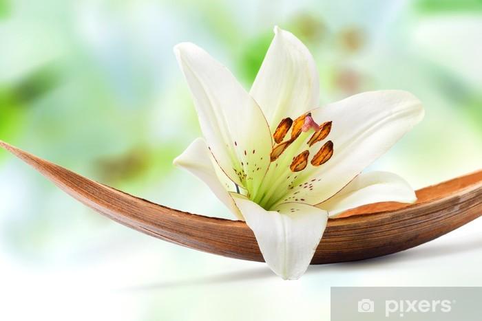 Sticker Pixerstick Belle fleur de lys blanche sur une feuille de coco palm -