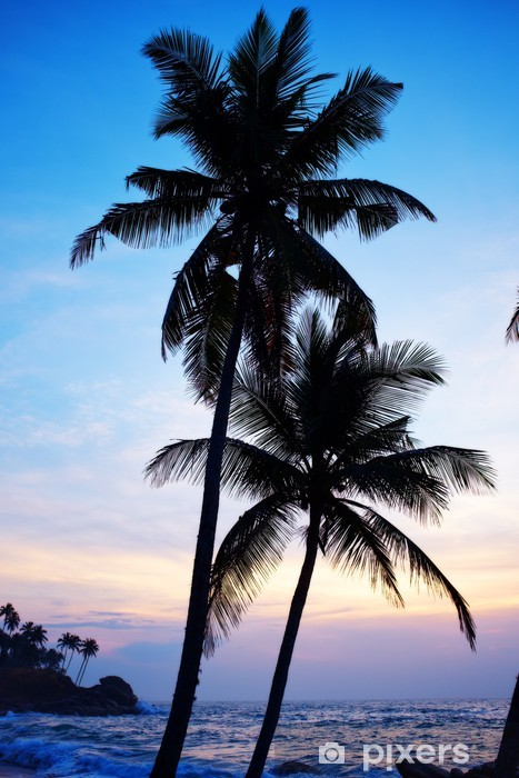 Vinil Duvar Resmi Tropikal plaj - Asya