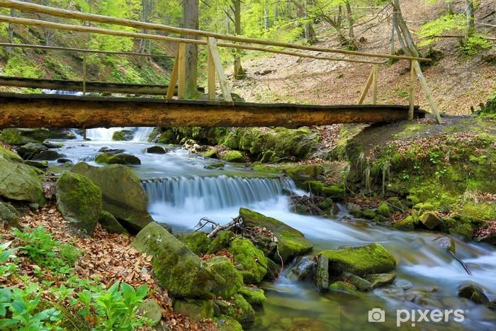 Naklejka Pixerstick Drewniany most nad górskiej rzeki - Woda