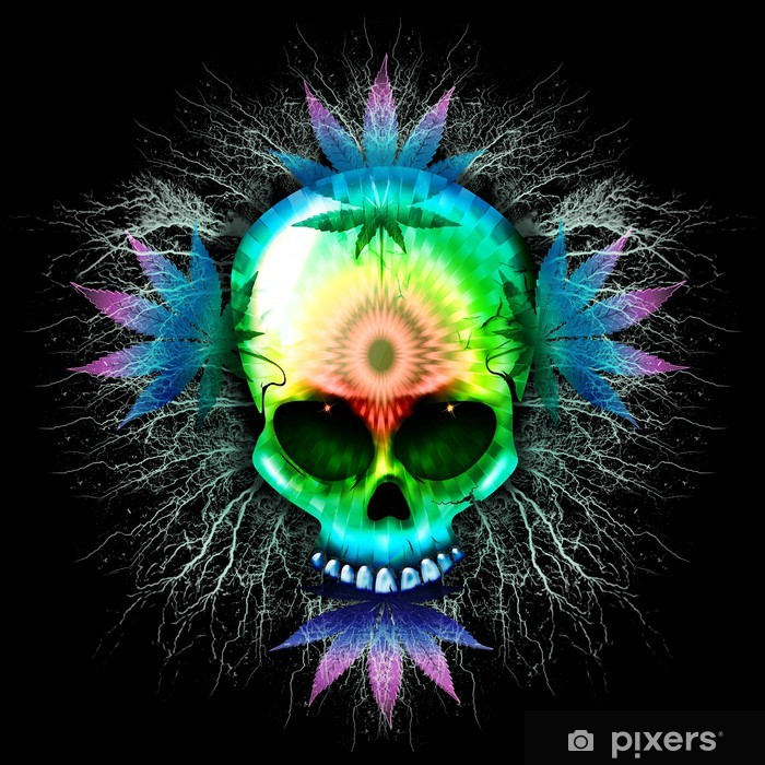 Marijuana Psychedelic Skull Pixerstick Sticker - Life