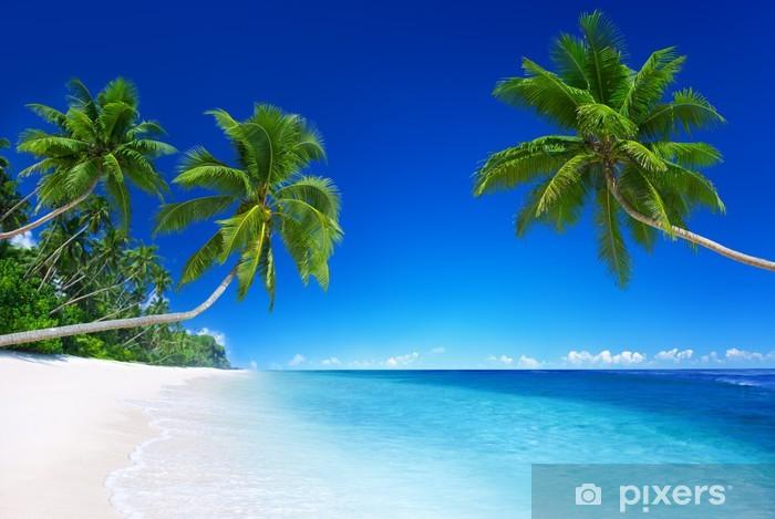 Tropical Paradise Vinyl Wall Mural - Palm trees