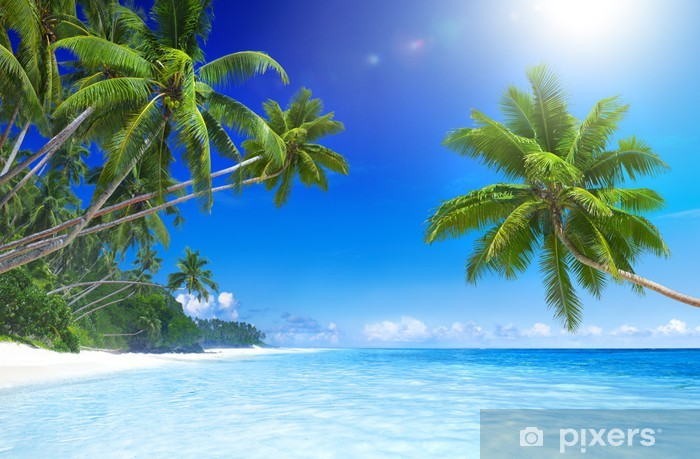 Fototapeta winylowa Tropikalny raj na plaży - Tematy