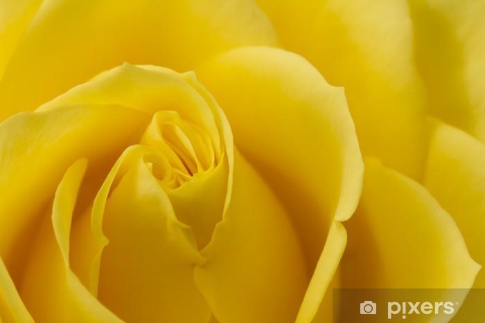 Vinyl Fotobehang Close-up beeld van gele roos - Thema's