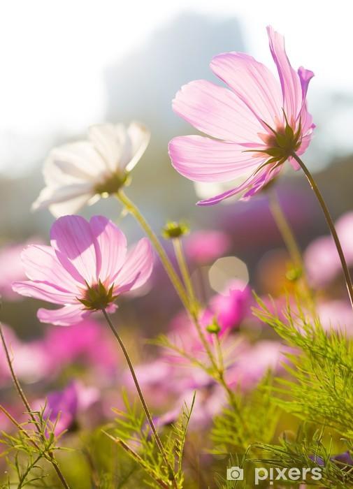 Sticker Pixerstick Daisy fleurs et du soleil - Fleurs